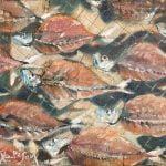 Peixe Seco 2