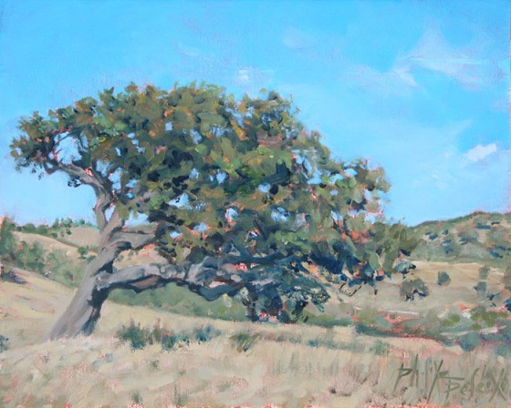 Sobreiro Vale Bemposta - 24X30 - 2012