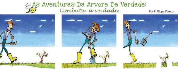 Read more about the article Aventures du sapin de vérité