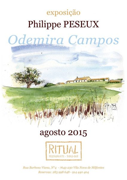 Read more about the article Odemira Campos